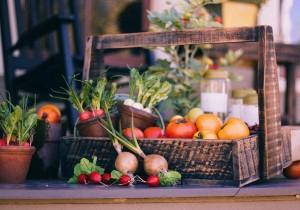 Sprawdź co mówią naukowcy o diecie roślinnej!