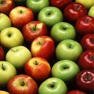 Domowa nalewka z jabłek