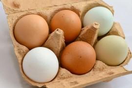 Najlepszy przepis na zrobienie jajek po wiedeńsku, czyli jajek w szklance