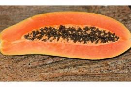 Nietypowy obiad: papaja na słono