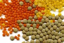 5 wegańskich produktów, które pokochasz
