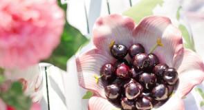 Wiśnie na wytrawinie – czyli najlepsze przepisy z wiśniami