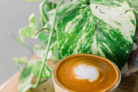 Shake śniadaniowy Cappuccino